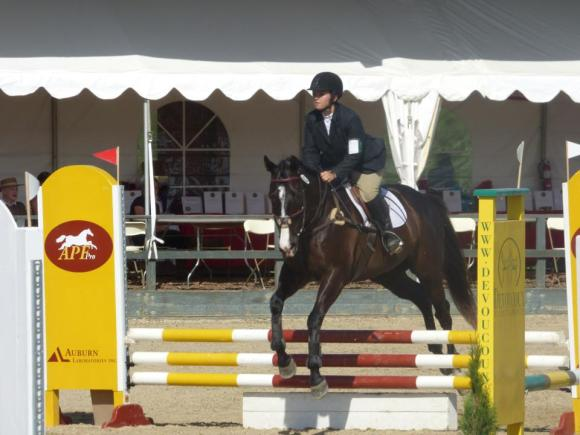 show jumping at Woodside with my old horse, Blazer (AKA Heisenberg) May 2014